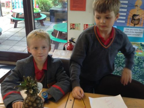 Year 3 - poetry that uses the senses