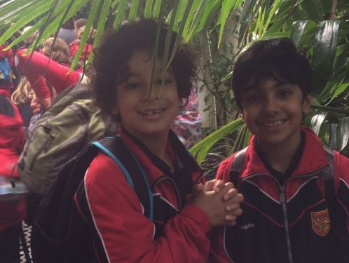 Year 4 explore beautiful Kew Gardens