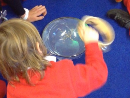 Reception learned some interesting facts about our senses