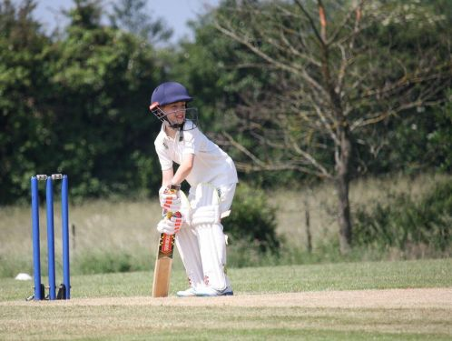 Sport - cricket and triathlon photos