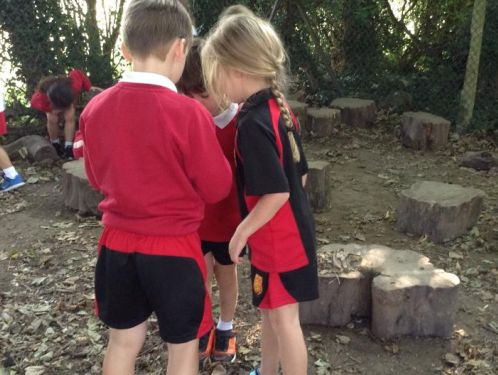 Year 1 hunt for the Gruffalo