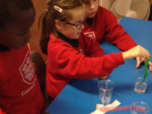 Year 2 consider which materials are absorbent