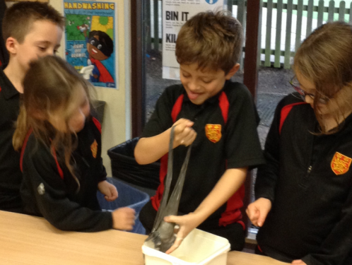 Year 3 - exploring the intestines