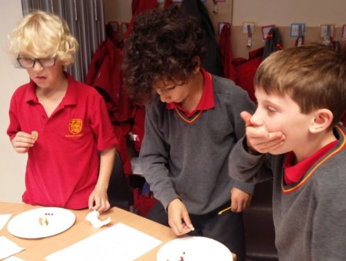 Year 4 taste fruits from all over the world
