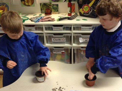 Reception learn about 'Growing'
