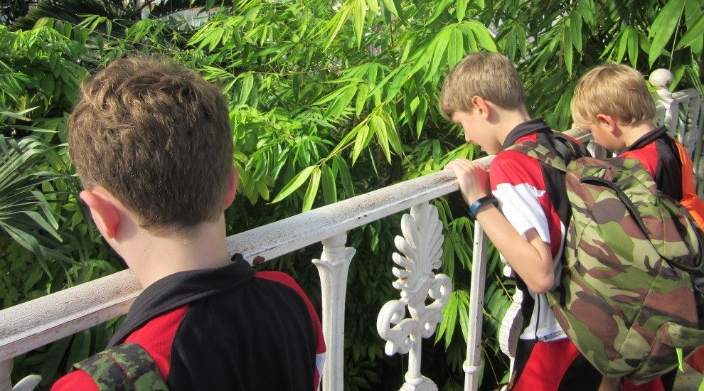 Year 4 reflect on their trip to Kew Gardens