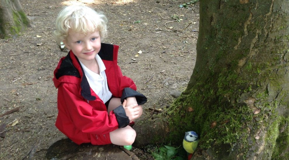 Year 1 build bird nests in Forest School