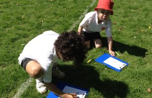 Forest school4