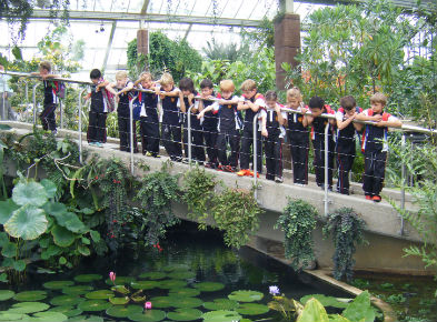 kew gardens year 4 bridge scaled