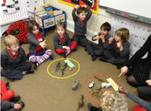 Reception sorting animals