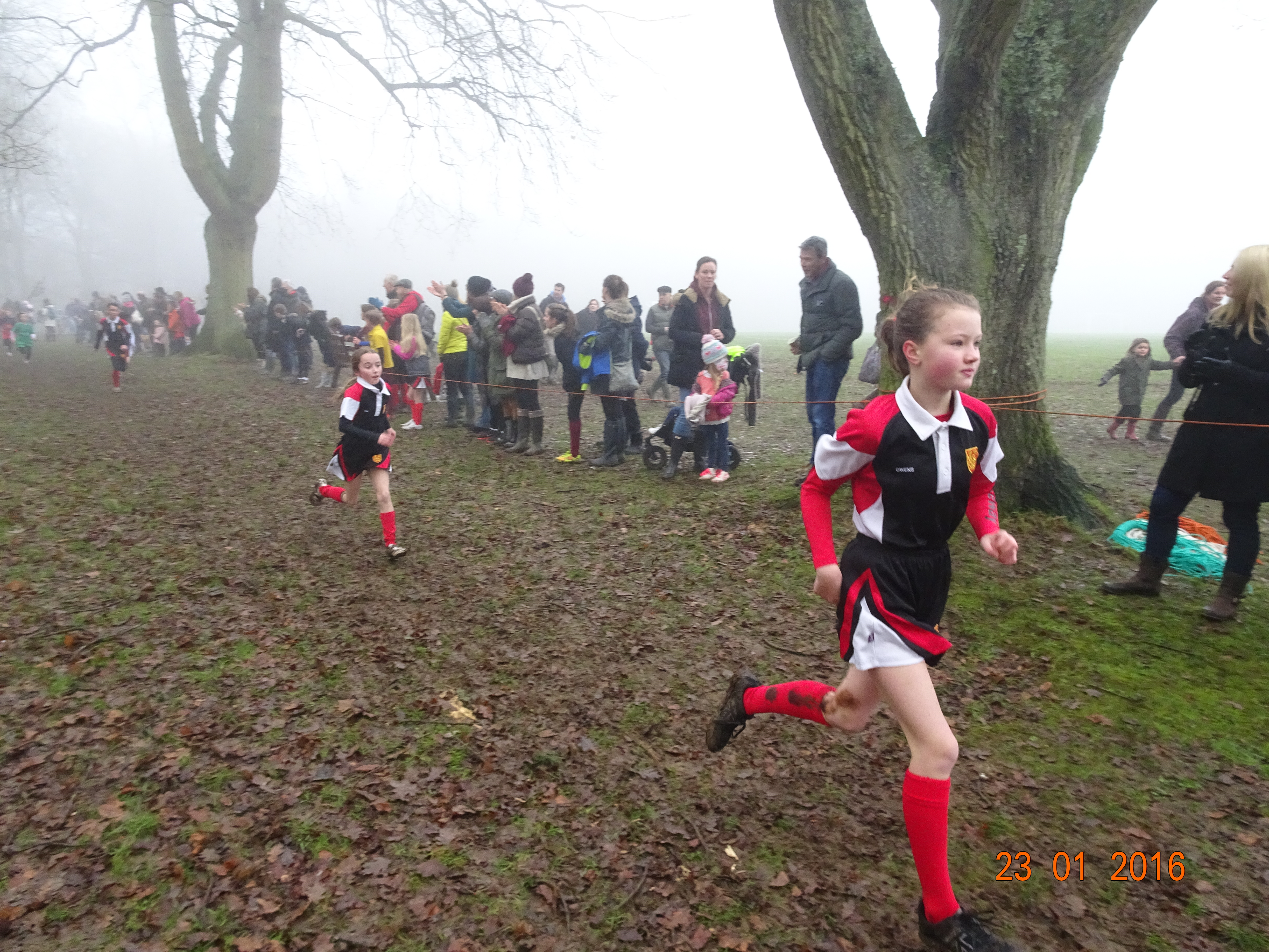 Cross country b